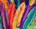 اصول استفاده از رنگ ها در طراحی لباس